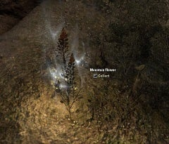 Mountain Flower Screenshot.jpg